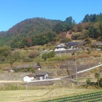藤ノ川集落