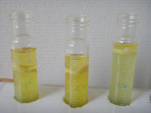 高濃度の精油の抽出の成功
