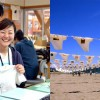 インターンシップ研修生募集 NPO砂浜美術館