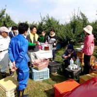 ミニ講座+収穫体験