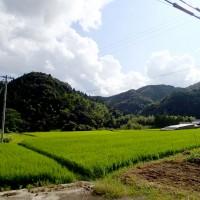 和歌山田園