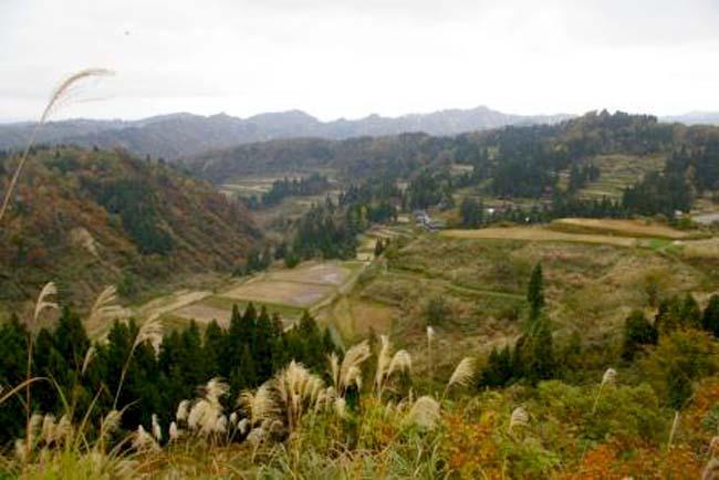稲刈り後集落遠景