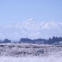 初春の妙高山
