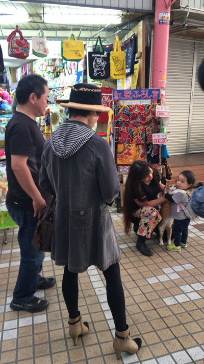 四万十 子育て 沖縄