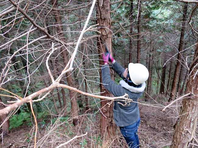 三瀬林業研究会