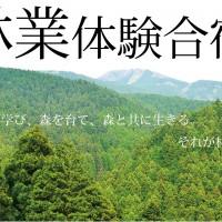 森林体験合宿