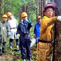 夏の林業体験