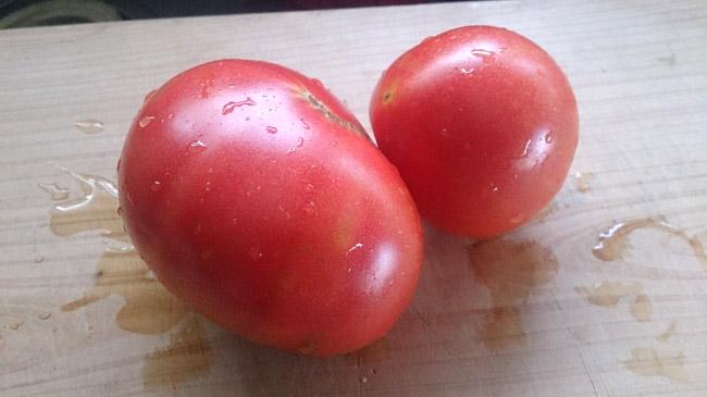熟れてから収穫するトマトは激美味