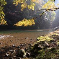 紅葉と中津川