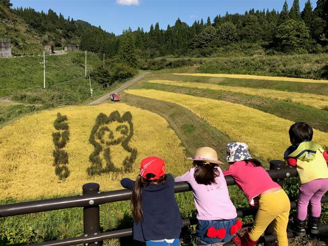 子どもたちと一緒に黒米を手刈1