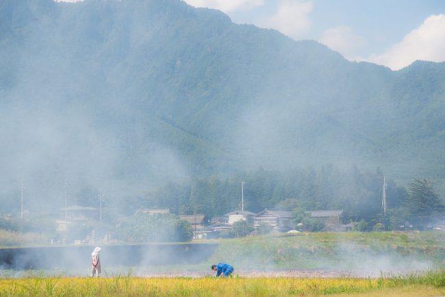 LODEC_野焼き