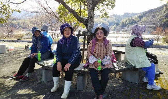 桜祭りのために会場である公園のクリーン作戦を行う頭巾部隊。