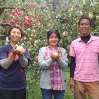 土本観光果樹園