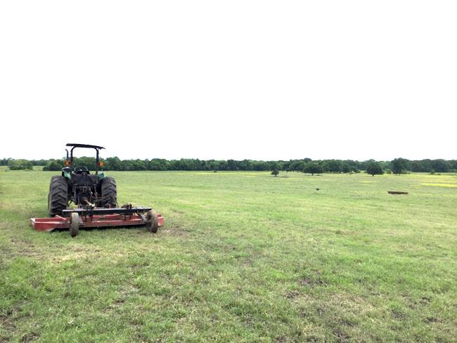 牧場の仕事