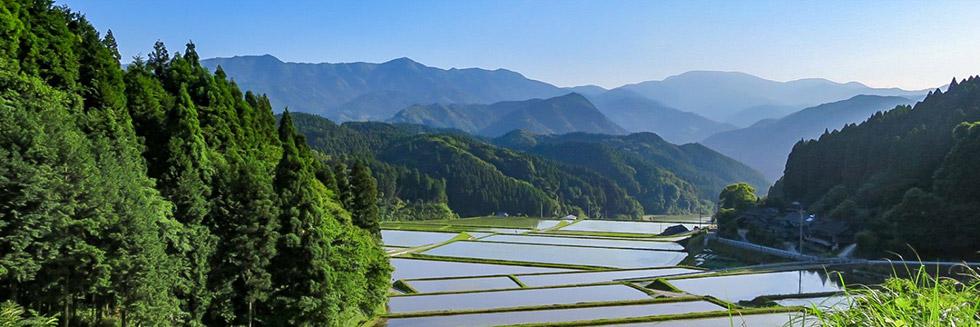 佐賀のお山の100の仕事