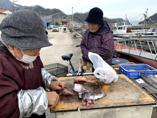 魚売りのおばちゃん