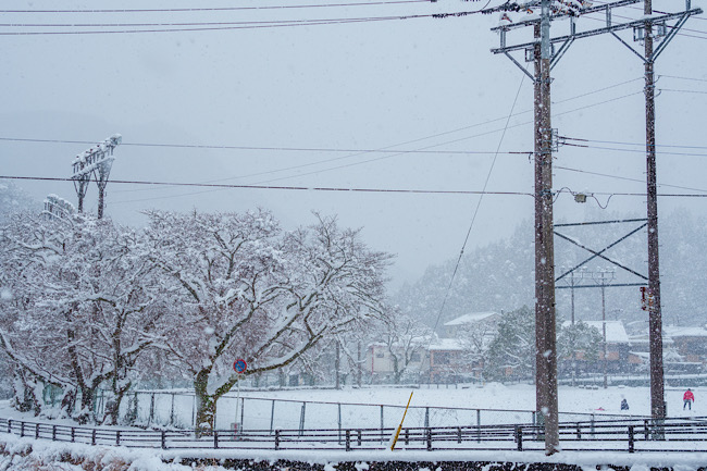 佐賀の雪景色2