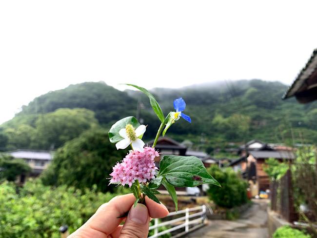 梅雨の雑草ブーケ